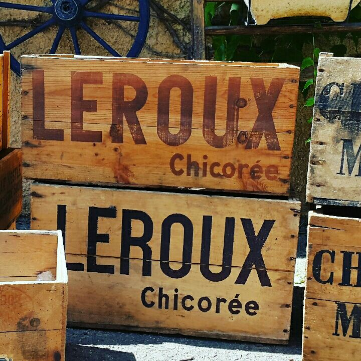 Chicoree Leroux